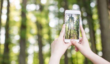 Nos conseils pour optimiser vos photos